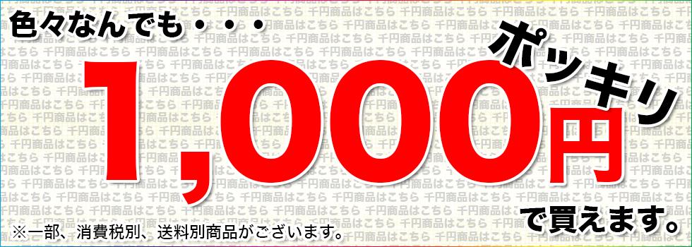 1000円ぽっきり!